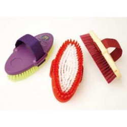 Body Brush EQUERRY...