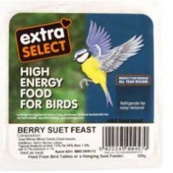 BERRY SUET FEAST SUET BLOCK