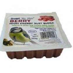 SUET TO GO Wild Bird SUET TREAT BERRY