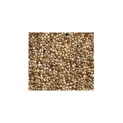BUCKTONS 50/50 Budgie Seed 20 Kg