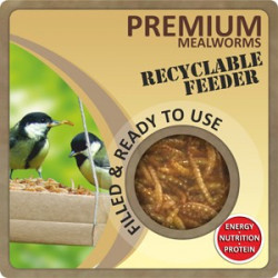 Dried Mealworms & Recyclable Feeder 80g