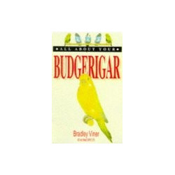 All About Your Budgerigar